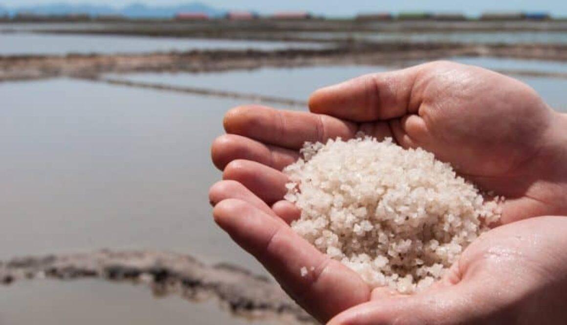 Pemerintah Harus Batalkan Impor Garam